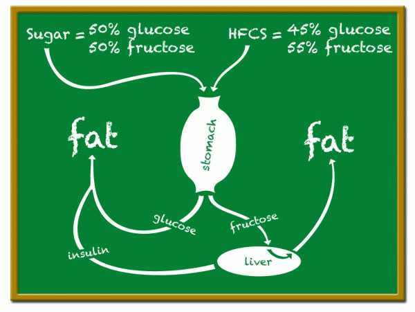 sugar vs hfcs
